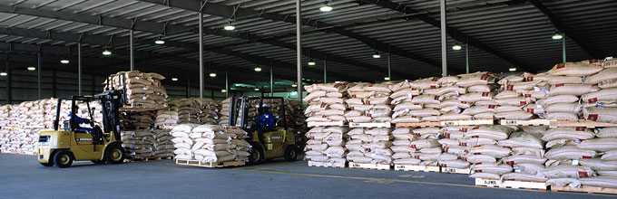 AJWA Rice, Leading Supplier of Processed Rice in the Middle East